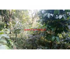 30 Acres Neglected Coffee Estate for sale in Sakleshpura