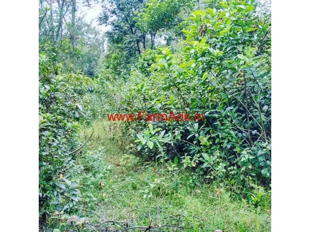 2 Acre Land for sale in Sakleshpura - Hassan
