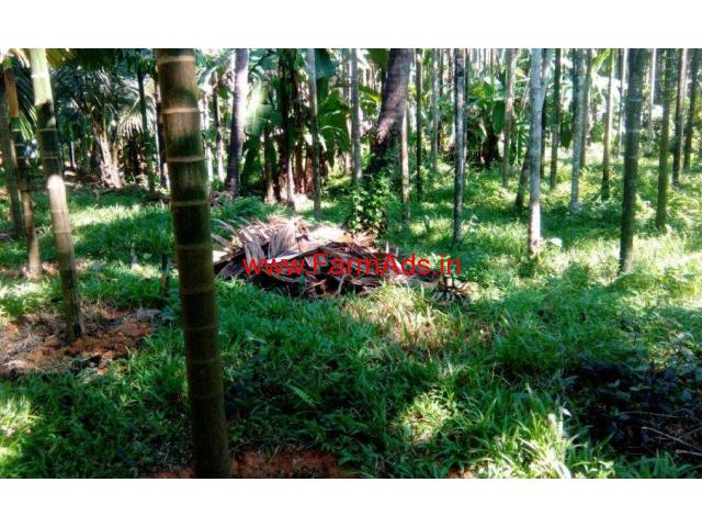 3.5 Acres Farm land with House for sale at Nellyadi - Puttur