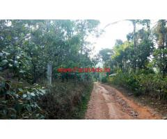 2.5 acre Farm Land for sale at Thrissery - Wayanad