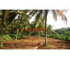 8 Acres High Yielding Coconut farm for sale at Chittur - Palakkad