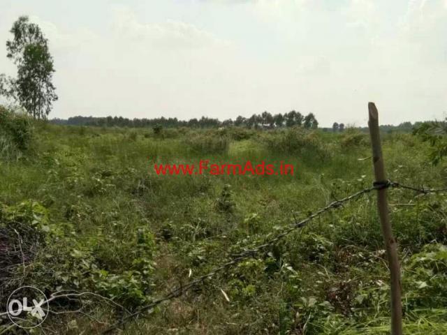 126 Bigha Agricultural farm land for sale near biharigarh Dehradun