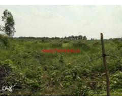 126 Bigha Agricultural farm land for sale near biharigarh Dehradun