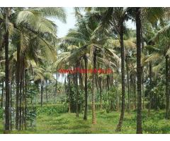 3.65 acre farm land for sale close to Manipal.
