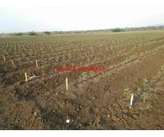 29 Acres Red Soil Farm Land for sale at Hiriyur