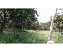 25 Acres Agriculture land for sale at Kanakenahalli, Doddaballapura Taluk