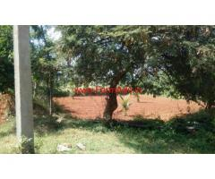 2 Acre Agriculture Farm Land for sale near Magadi