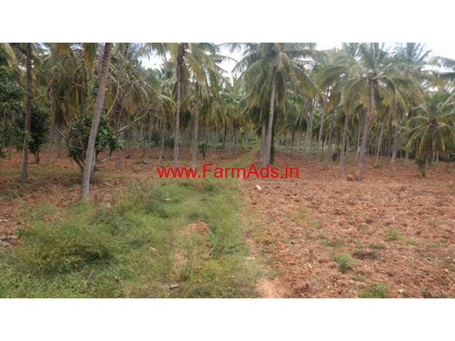 12 Acre Farm Land for sale at Arasinkere - Mysore