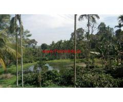 3 Acre Coffee Estate for sale at Virajpete - Coorg