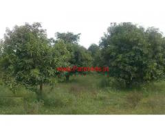 25  Acre Mango Farm with Plain land for sale in Chitoor.