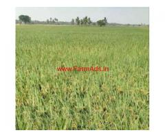 10 acres agriculture land for sale in Bomminampadu