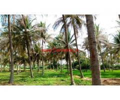 11 Acres River Attached farm land for sale at Shoolgiri
