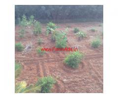 Farm for Sale Kadayam near Tirunelveli