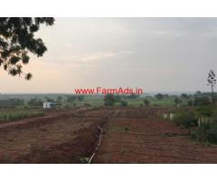 24 Acres Organic Pamogranate Farm for sale at Marpally