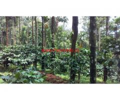 10 Acre Coffee Estate for sale in Vythri - Waynad