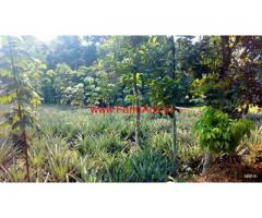 1.72 Acre Land for sale at Ernakulam - Kothamangalam