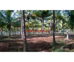 26 Acres Agricultural land for sale in Shravanabelagula