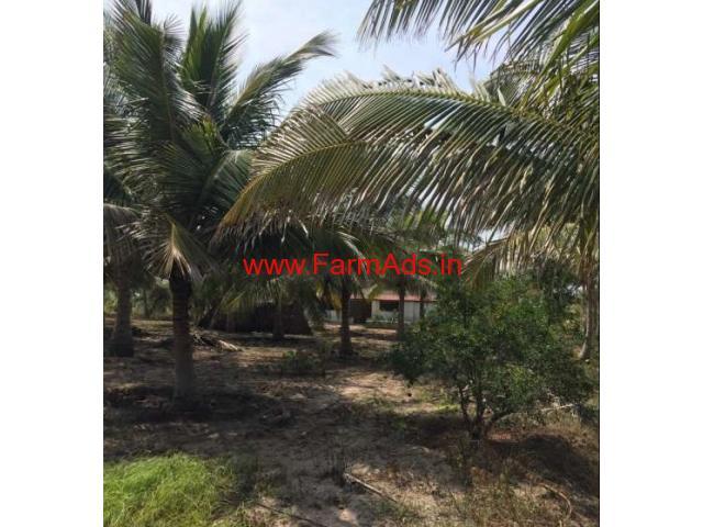 10 Acer coconut farm for sale at palladam area near senjerimalai