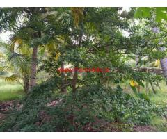 4.5 Acre farm land for sale in near vathalakundu, dindigul
