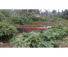 1.5 acres road side farm for sale at KC Patti - Kodaikanal