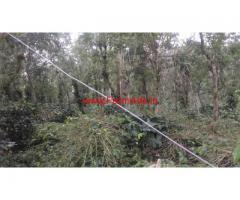 3 Acre Well Maintained Coffee and Pepper Estate for sale at Kodaikanal