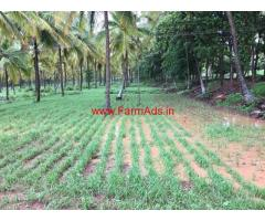 20 Acres Coconut Farm for sale at Holalkere - Chitradurga