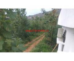 32 acars palm oil agri land with farm house for sale at Bobbili Mandal