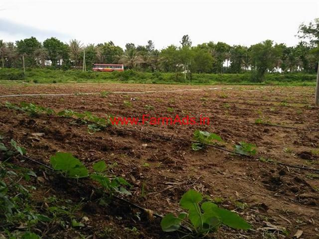 67 Gunte Highway Facing Farm land for sale at Arkere - KR Nagar
