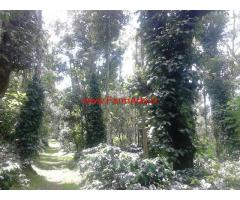 60 Acres Robusta Coffee Estate for sale in Belur.