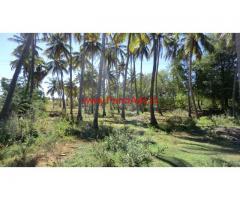 20 Acre Farm land for sale at Ambasamudram