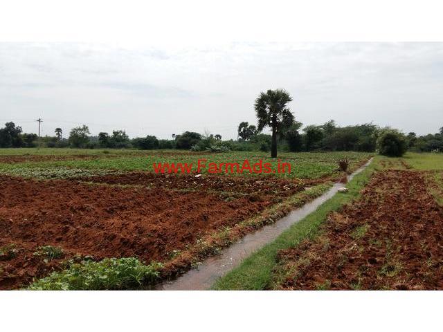 30 Acres Cheap Agriculture land for sale near Tirunelveli