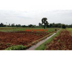 30 Acres Cheap Agriculture land for sale near Tirunelveli