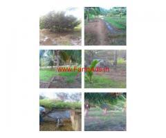 42 Acres Fertile farm land for sale Veerakeralamputhur, Tirunelveli