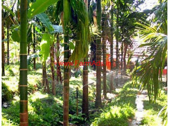 525 Cents Agriculture Land with House for sale at Karkala