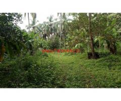 8 acre Farm land for sale at Cherupuzha near Parappa