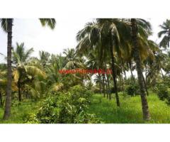 9.5 Acres coconut plantation for sale Govindapuram State Highway