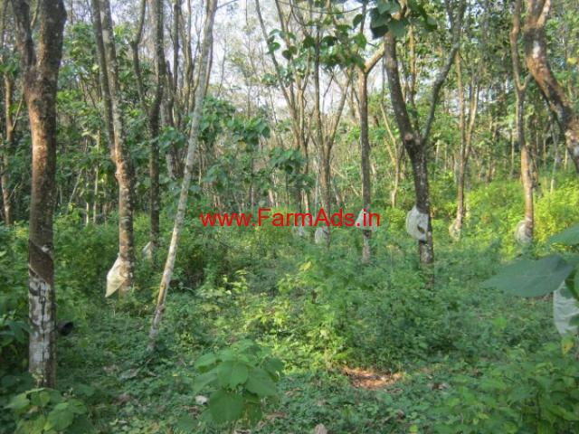 27 Cents square plot of rubber plantation for sale at Kozhuvanal, Palai