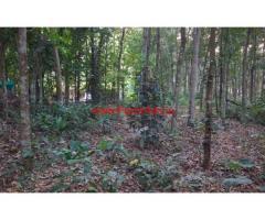 1.06 Acres Farm land for sale at Thodupuzha - Pala road Karimkunnam town