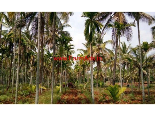 5.5 Acre Coconut Farm for sale near KB Cross, Chikkanayakanahalli