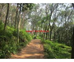 90 cents of Rubber plantation for sale at Erumeli, Mukkuttuthara, Kottayam