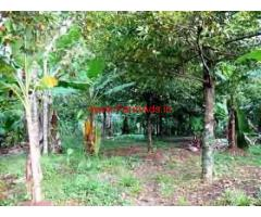 50 Cents River Facing Land for sale at Chalakudy