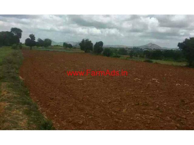 6 Acres Agriculture farm Land for sale Denkanikotai