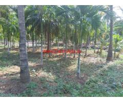 7 Acres Farm Land and 3.5 Acres Agriculture Land for sale at Tumkur