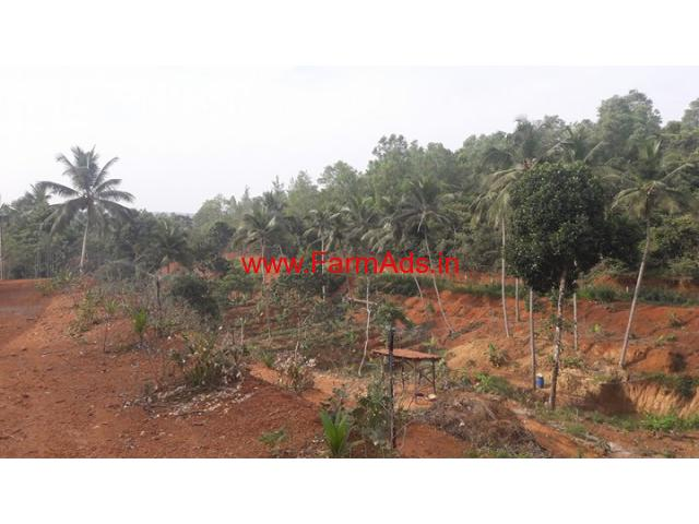 312 Cents Farm land for sale at Manjeshwara - Kerala