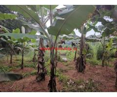 1.1 Acres Farm and Vegetable plantation for sale at Thiruvilwamala.