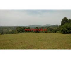 20 Acres beautiful farm land for sale at Sakleshpura