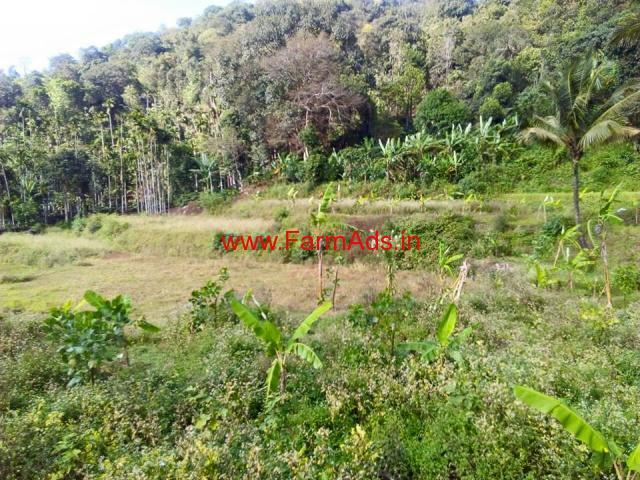 2 Acre 40 Gunte Agriculture Land For Sale near Kalasa - Mudigere