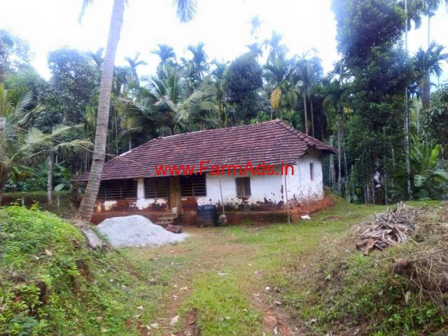 8 Acre 30 Gunte Coffee Estate for sale near kalasa - Mudigere