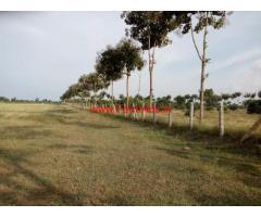 1 acre 16 gunta arm land for sale at Navilur near Mysore