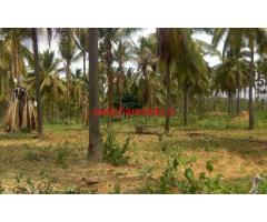 2.25 Acres Completely developed farm land for sale at Turvekere